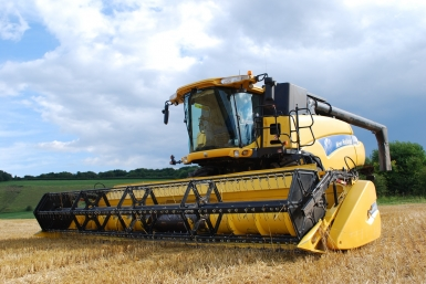 field-farm-wheat-grain-land-asphalt-744321-pxhere.com-89ab670f684f352d47f4553ede0afddd.jpg